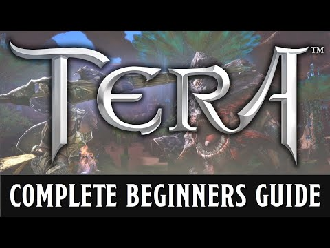 A beginners guide to TERA
