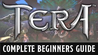 A beginners guide to TERA - 2019