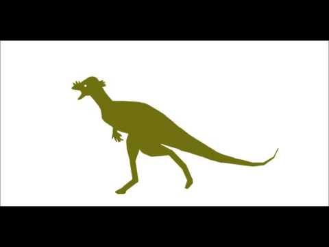 PPBA Stygimoloch vs Homalocephale