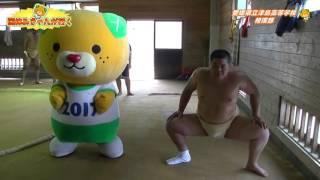 国体みきゃんが行く 津島高校相撲部 (第15回) thumbnail