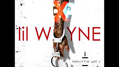 Lil Wayne - Selsun Blue (Sorry 4 The Wait 2)