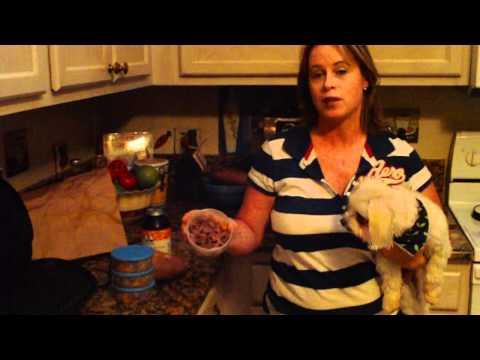 Homemade Pet Food @ WWW.HOW-TO-START-A-PET-SITTING-BUSINESS.COM