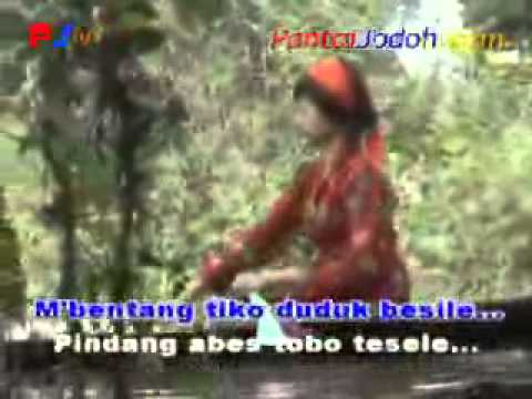 video kompilasi lagu ogan ilir - pindang_pegagan.wmv