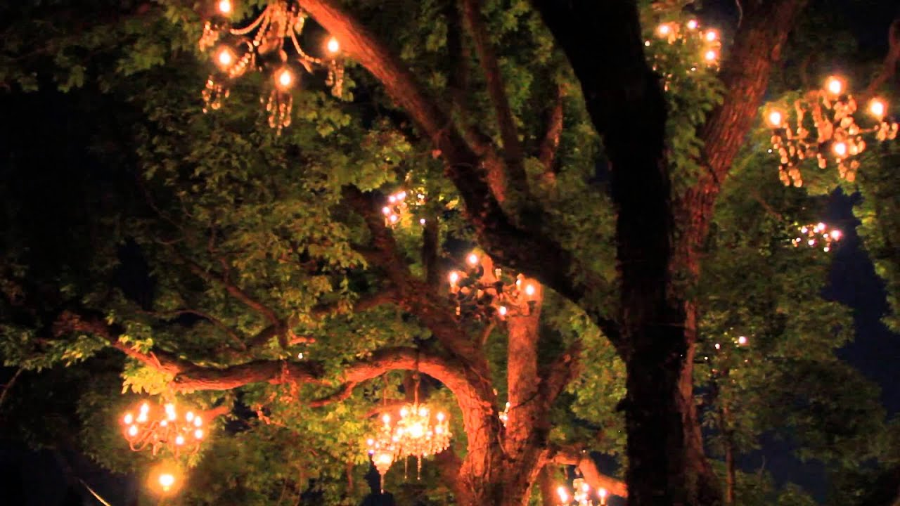 The Chandelier Tree - YouTube