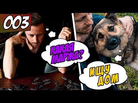 VLOG #003: Серьги из эпоксидной смолы / Помощь бездомным животным! История собаки, которую сбили