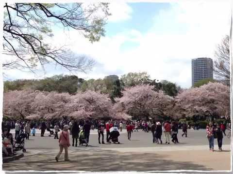 TOKYO   CHIYODA : APRIL 2014 :slidi