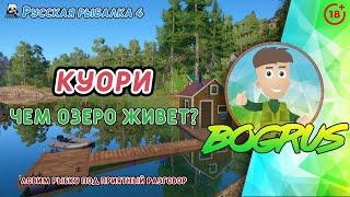 КУОРИ Чем озеро живет или не живет Русская рыбалка 4 18