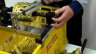 Fastest pineapple peeler ever
