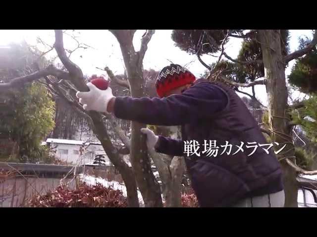 映画『石川文洋を旅する』予告編