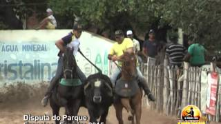 Disputa da Vaquejada do Paqrque Francisco Ferreira 2015