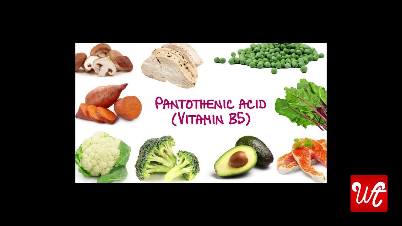 vitamin b5 alimentos