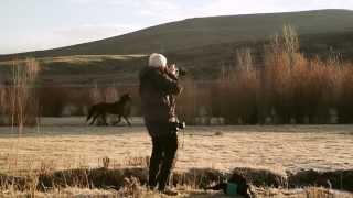 Season 1: Episode 2 - Shooting Wildlife