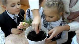 Фрагменты уроков природоведения в 1-А классе УВК №6