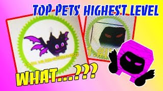 PETS HAVE HIGHEST LEVEL AND INCREASE MOST AFTER UPGRADE IN PET SIMULATOR (Roblox)