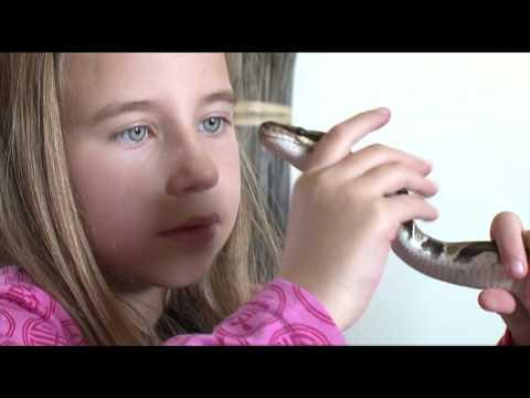 Ma mère ne supporte plus mes serpents !