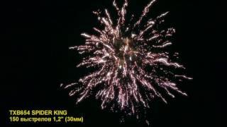 TXB654 SPIDER KING