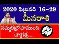 2020 ఫిబ్రవరి నెల 16-29 రాశిఫలాలు మీనరాశి | Rasi Phalalu 2020 | Meena Rasi | Pisces Weekly Horoscope