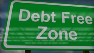 professional debt management: Debt Management - Why Leave it to Professionals?