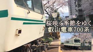 桜咲く季節をゆく叡山電車700系