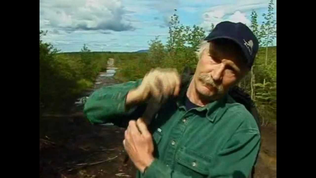 Things you may not know about Chris McCandless - YouTube