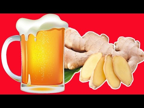 Make Your Own Ginger Beer At Home Step By Step