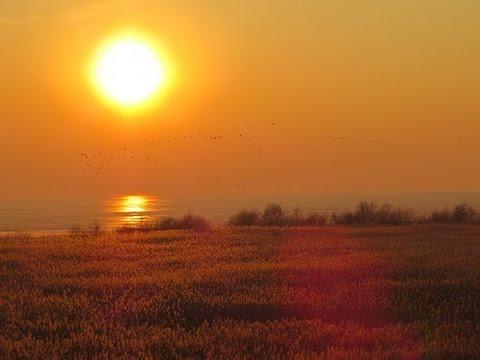 Lietuvos gamta - Sezonų Paslaptys / Lithuanian nature - Secrets Of The Seasons [Full HD 1080]