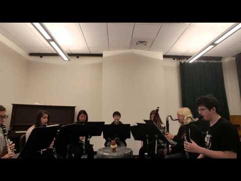 zinnia's battle theme instrumental