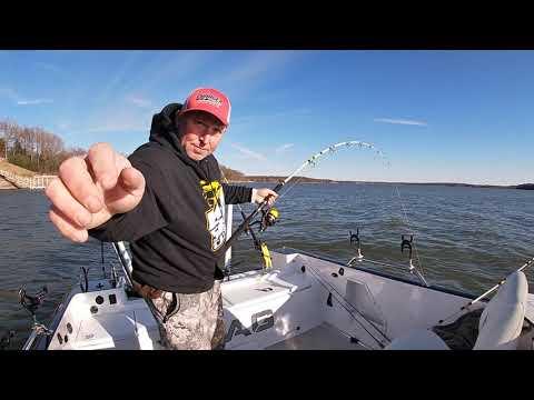 Catfishing Lakes For BIG BLUE CATFISH On Deep Ledges!