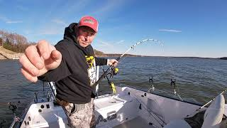 Catfishing Lakes for BIG BLUE CATFISH on deep Ledges!