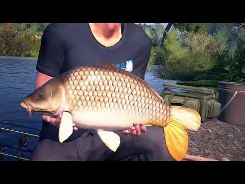 Big plated 46lbs carp dovetail games euro fishing doovi for Euro fishing xbox one