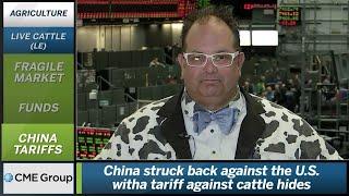 September 19 Livestock Commentary: Scott Shellady