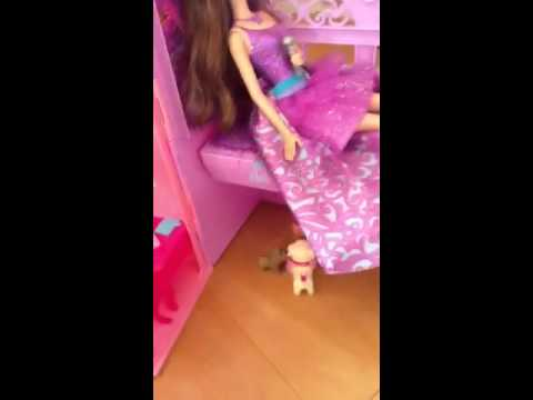 Tasha and Lucy's awesome princess and the popstar dollhouse