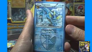 Pokemon Black White Plasma Freeze Theme Decks Frost Ray Opening