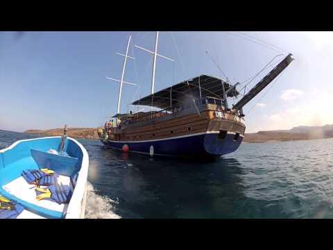 GoPro HD: Djibouti Whale Sharks