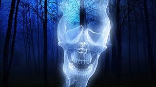 Ghost Recon Wildlans Ghost War pro