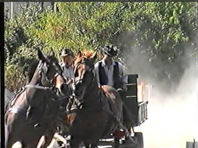 Fogathajtó verseny 2 rész - Vadász hajtás, Csetény, 2006.     x264
