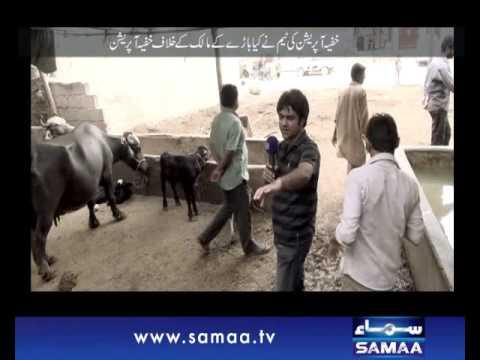 Khufia Operation, July 27, 2014