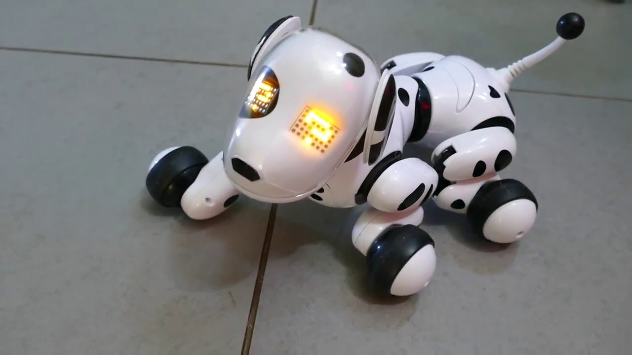 Zoomer - Electronic Pet Dog - Toy Review - YouTube