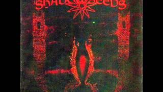 Shadowseeds - Baptized In Blood(Golachab) + Lyrics