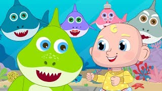 Baby Shark Original Dance Baby Shark Challenge + 30min of Nursery Rhymes Songs for Children