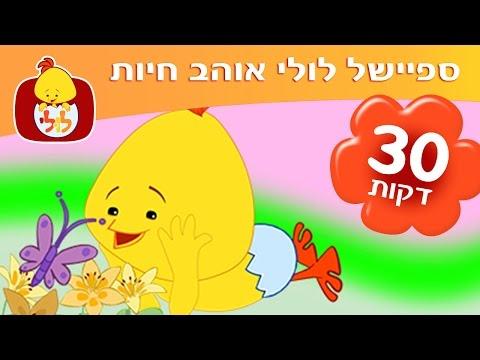 ספיישל לולי אוהב חיות - חצי שעה של תכניות לילדים ברצף - ערוץ לולי