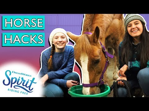 10 Equestrian Life Hacks You Need to Know! | THAT'S THE SPIRIT