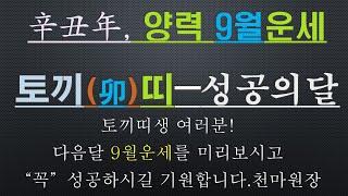 토끼띠-신축년 양력 9월운세-건강운,금전운,사업운,010/4258/8864