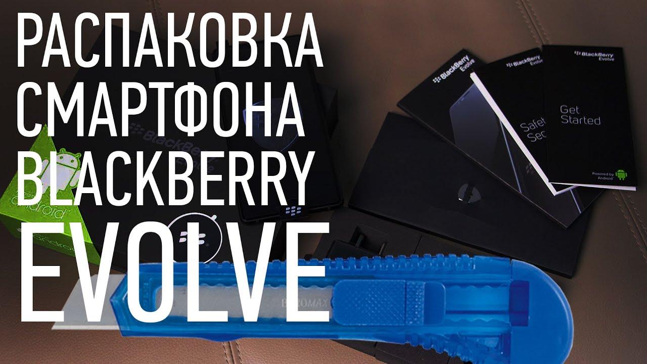 Unpacking your BlackBerry Evolve smartphone_Blackberry Themes free