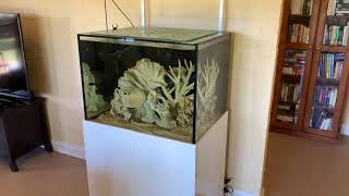 Watch this if you want to add dead coral!
