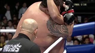 MMA  VS SUMO