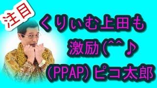 東アジア通信局 【ピコ太郎古坂大魔王】「PPAP」大ブレークで「眠りが浅...