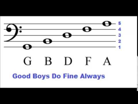 Bass Clef Lines and Spaces - How To Read Music