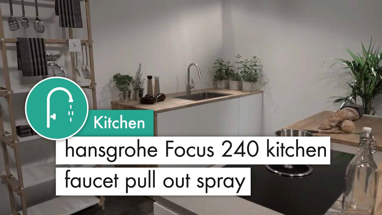 hansgrohe Focus 240 kitchen mixer pull out spray stainless steel ...