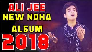 ALI JEE NEW NOHAY 2017 2018   NEW ALI JEE NOHA ALBUM 2018